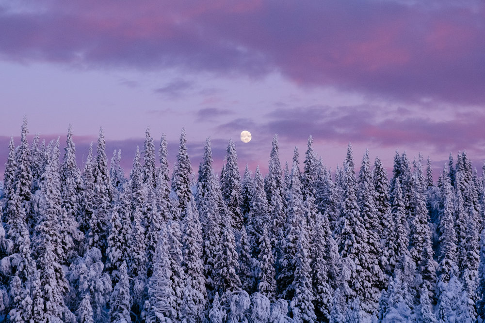 Pink Sunset and Moon Rise - Fuji XT2