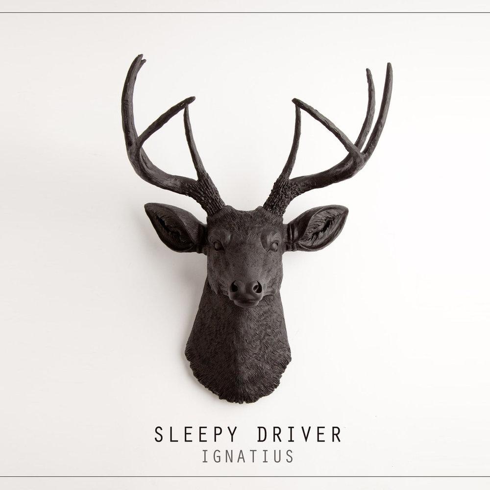 sleepydriver_ignatius.jpg
