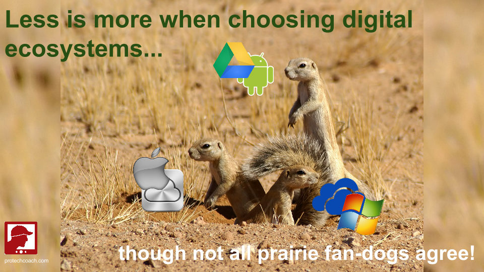 Less is more when choosing digital ecosystems.png