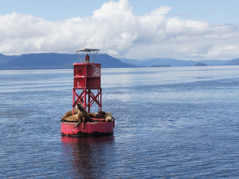 Alaska 2012 (51).jpg