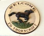 CQM_Thorncroft_20130127_03a.jpg