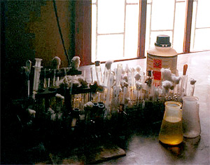The medical microbiology laboratory for Kikwit General Hospital, Democratic Republic of the Congo, where Ebola broke out in 1995.