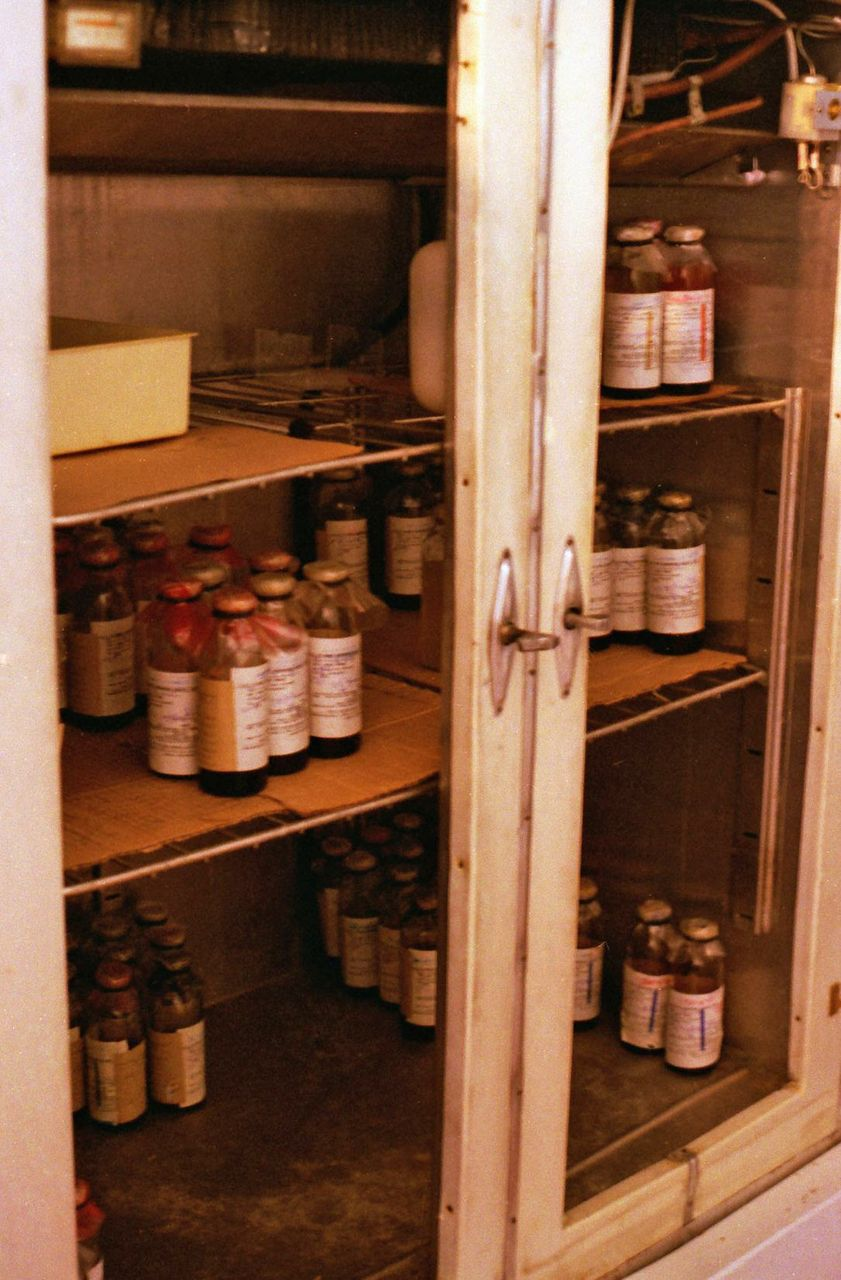"A Georgian ""blood bank."""