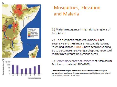 mosquitos malaria.png