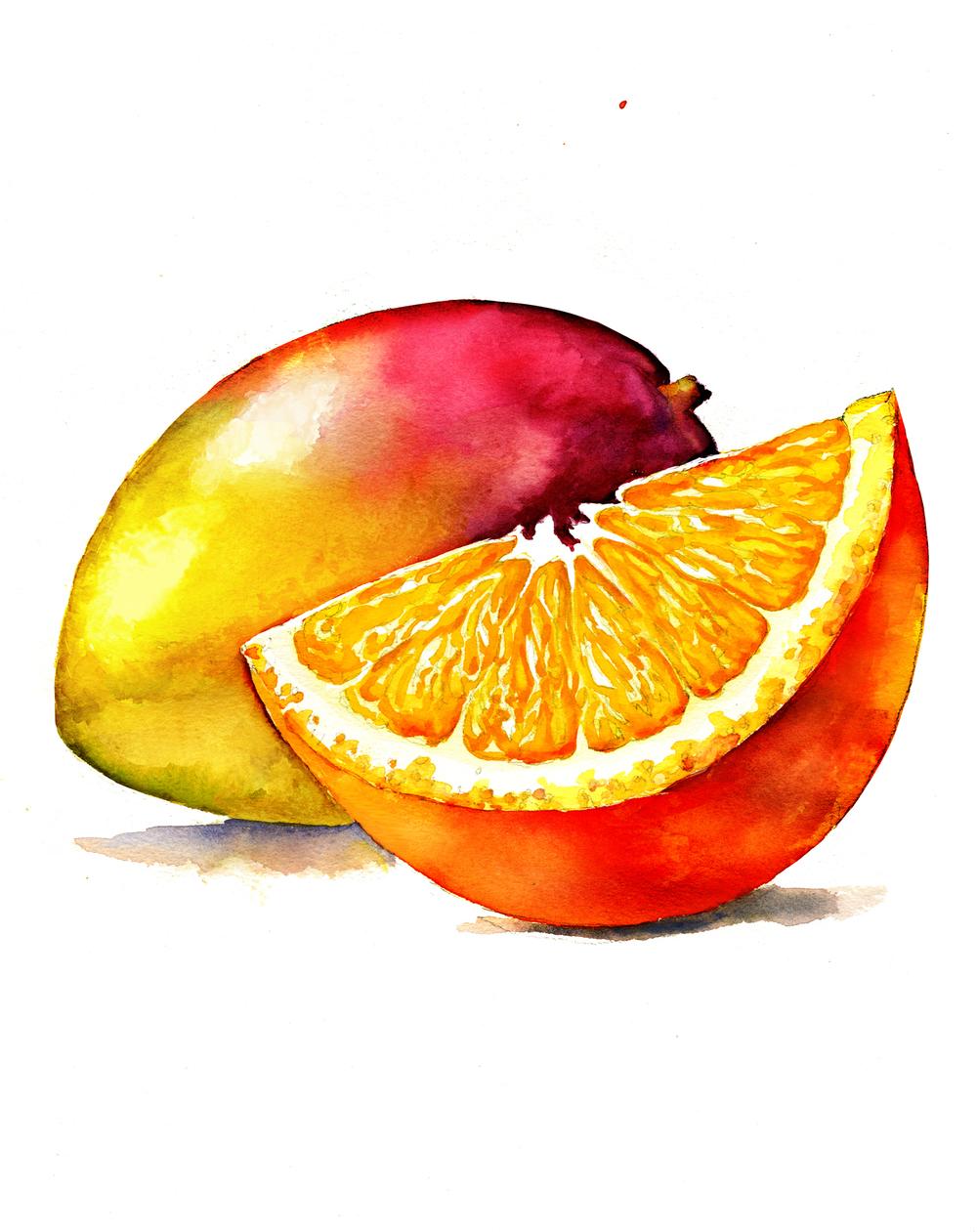 nantucket orangemango revise #2 150.jpg
