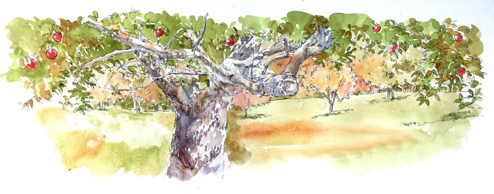 ralph lauren tree.jpg