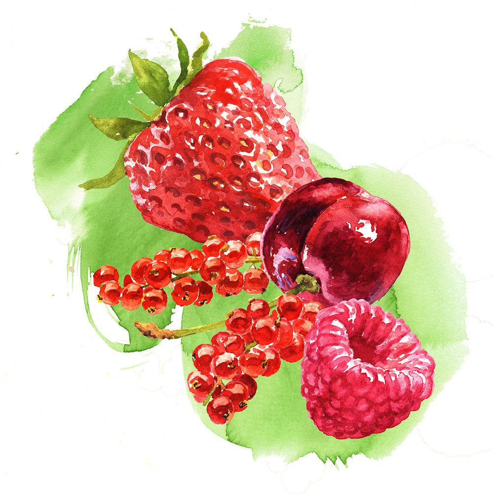 4 fruit 150 copy.jpg