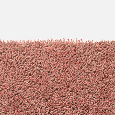 Grano - Natural:Red.jpg
