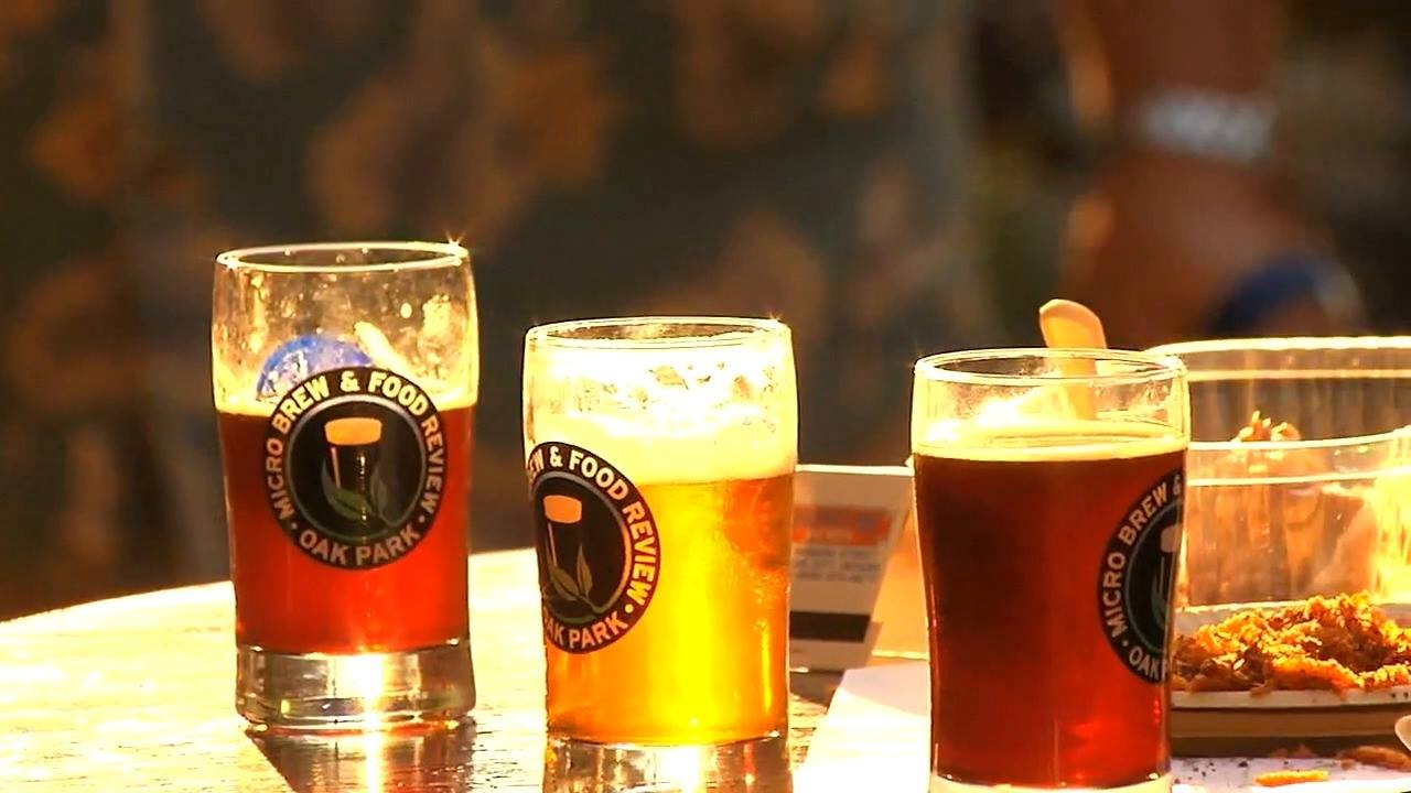The Oak Park Micro Brew and Food Review