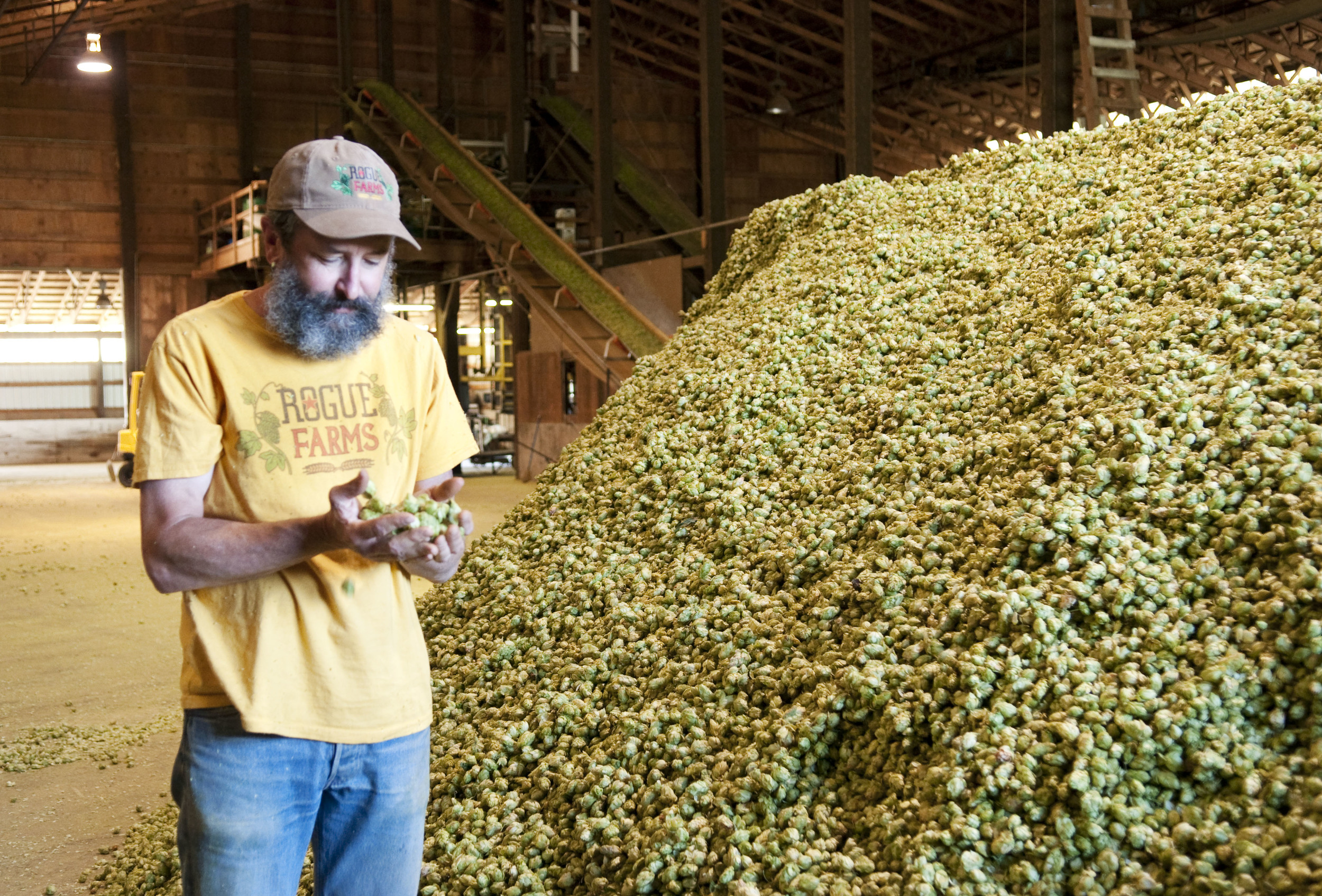 A Q&A With Rogue's Brewmaster, John Maier