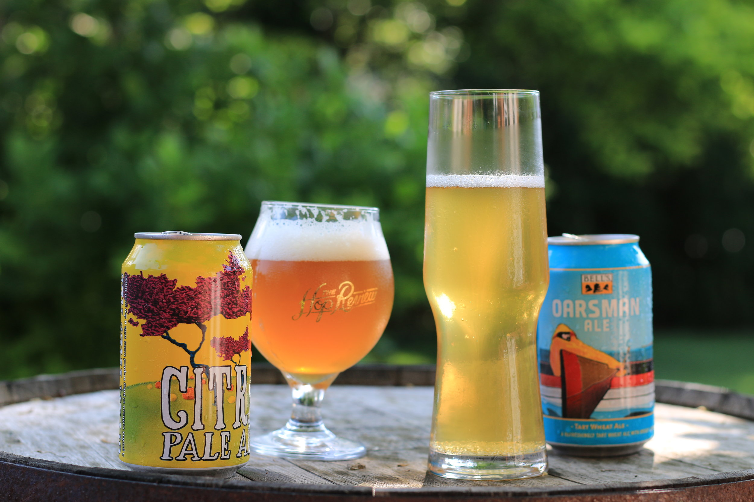 A 6-pack of Michigan Beers for Your 4th of July Cooler
