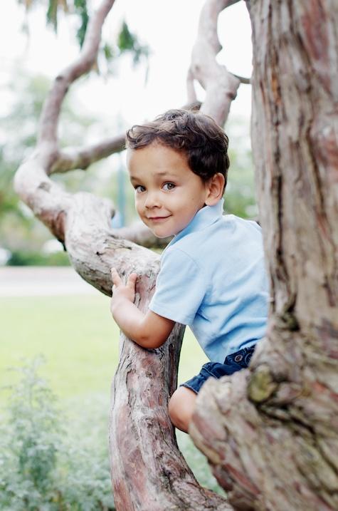 Jason in a Tree