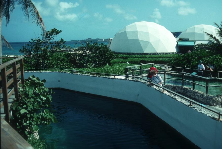 Coral World 1987