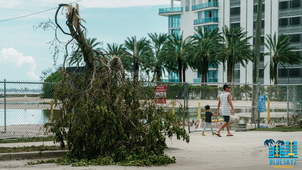 hurricane-irma-11.jpg