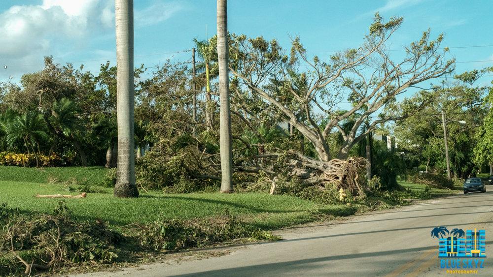 hurricane-irma-22.jpg