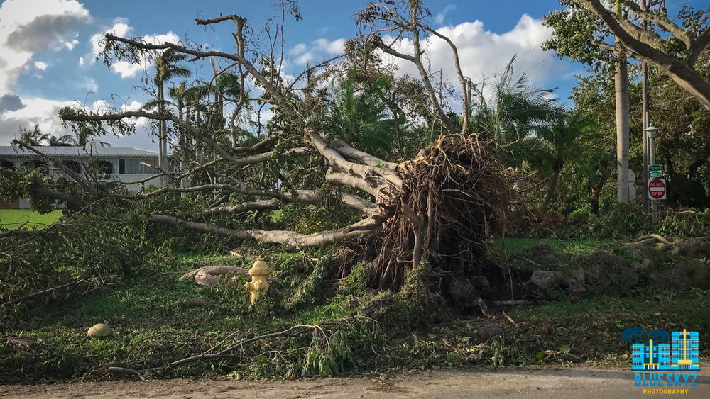 hurricane-irma-27.jpg
