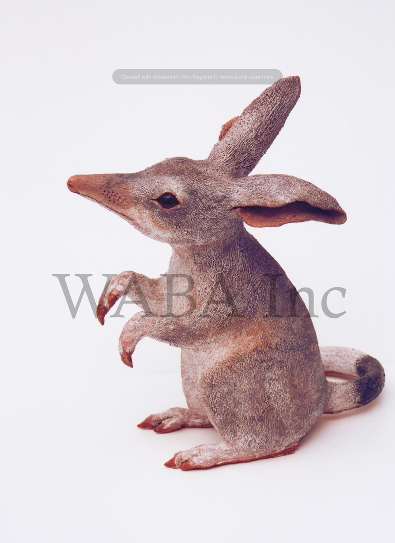 Bilby Appeal, Lorna Hobbs, earthenware clay and glazes, 270 x 160 x 270 mm (SOLD)