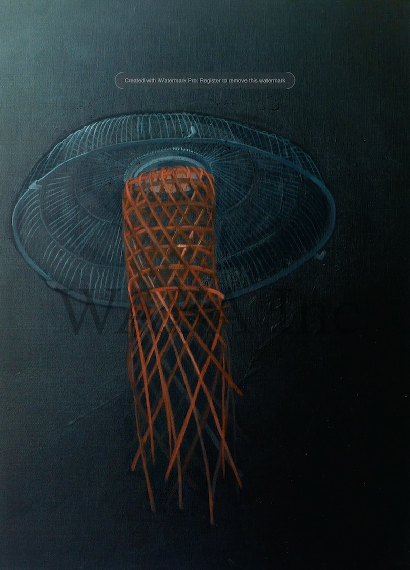 Jelly Fan, Carolyn Cardinet, acrylic on linen, 700 x 500 mm