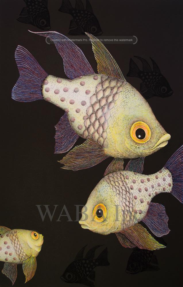 Pyjama-Cardinal-Fish.jpg