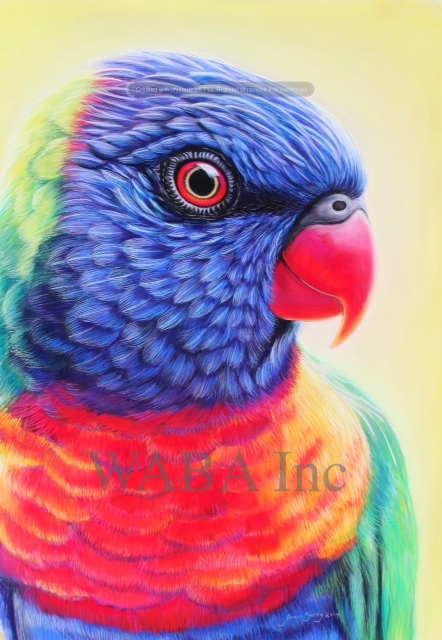 Cheeky Rainbow - Pastel by Joanne Barby.jpg