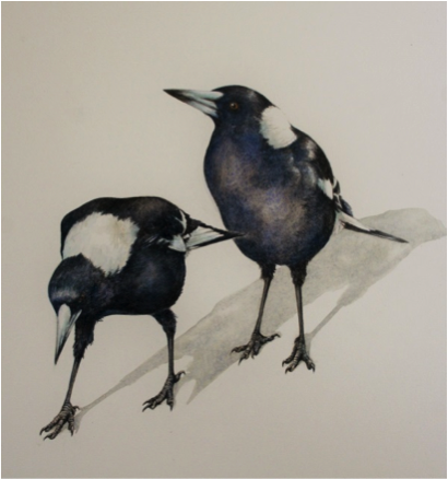 'Magpies' Watercolour by Lesley Wallington