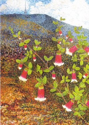 Black Mountain Canberra Bells (Card)