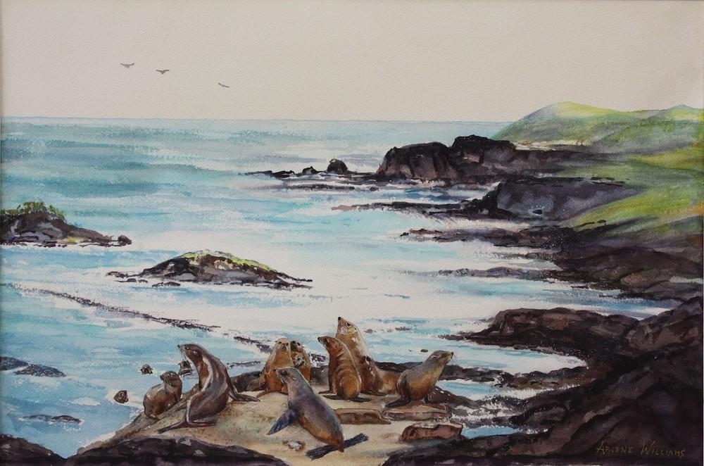 Fur Seals -_Arlene Williams.jpg