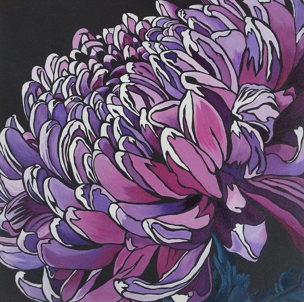 Voluptuous - Chrysanthemum morifoliumChry