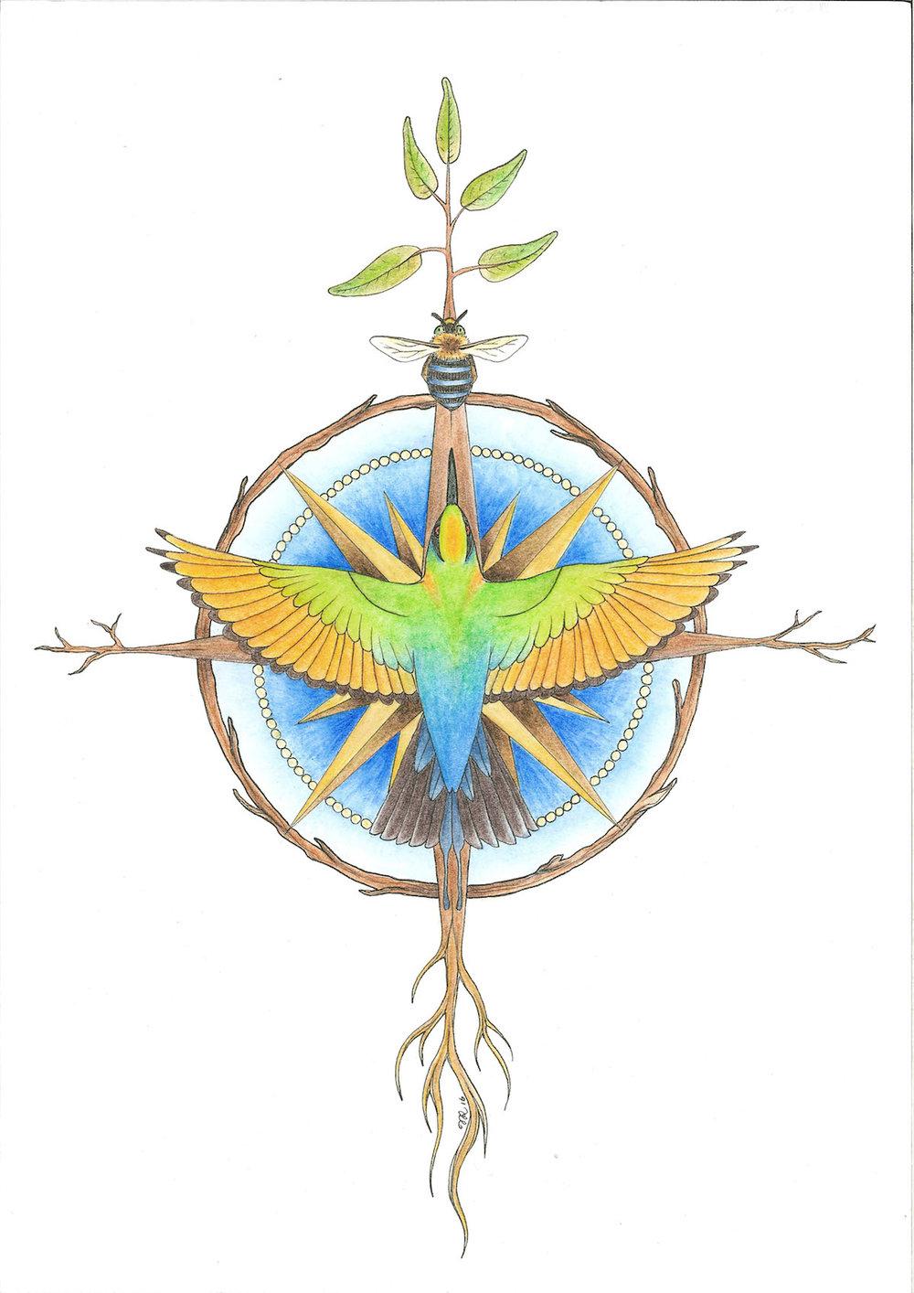 Natures Compass