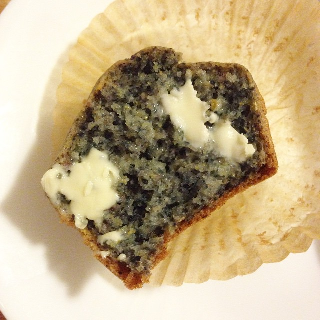 Delicious Vegan Blue Corn Muffins