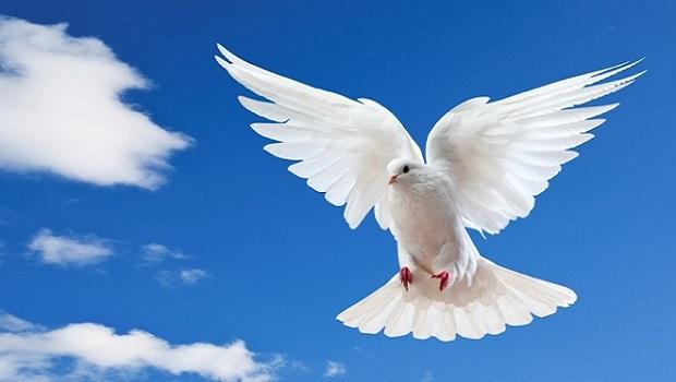 holy-spirit-OCN.jpg