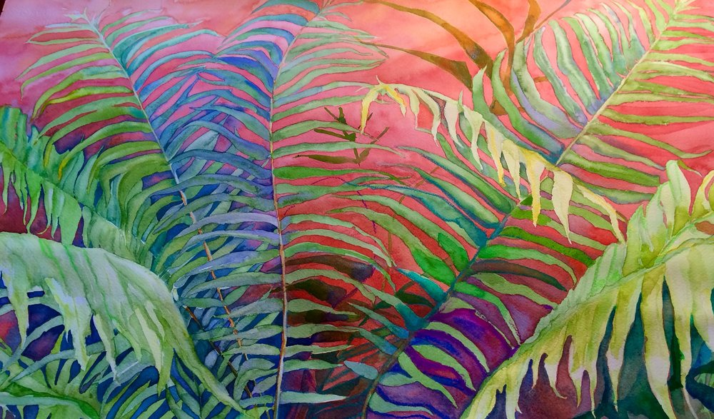 """ Fern Density"" 22""x 30"" watercolor on paper ( sold)"