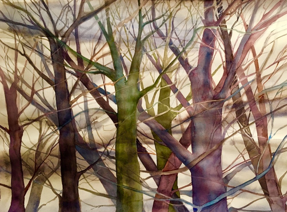 """ Winter Trees""  23"" x30' watercolor on paper (sold)"