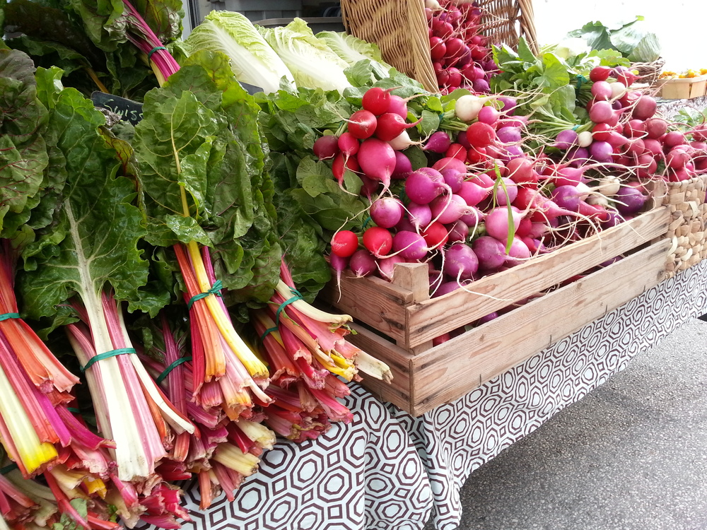 Bright Lights Swiss Chard and Easter Egg Radish