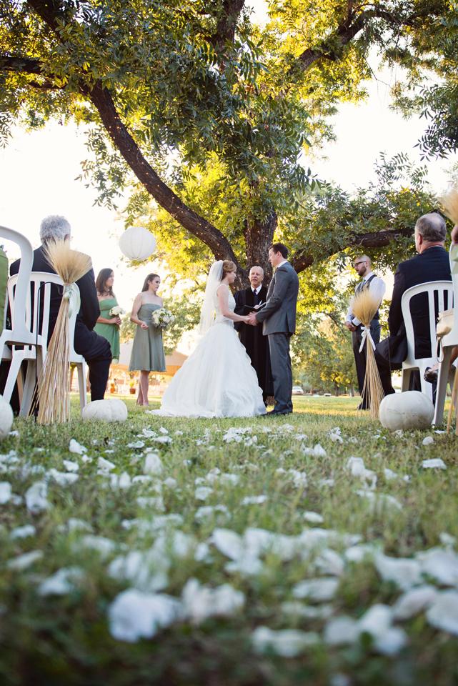 weddingweb14.jpg