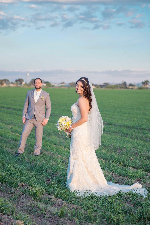 weddingwebsitesmallerpics-106.jpg