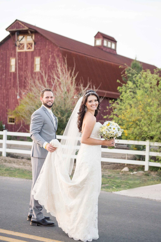weddingwebsitesmallerpics-110.jpg