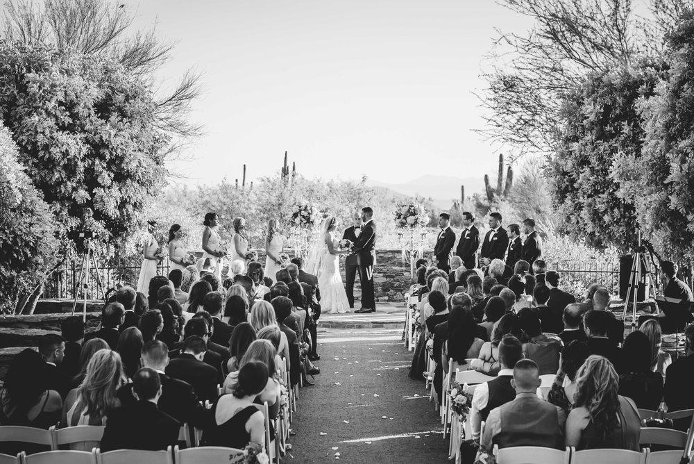 weddingwebsitesmallerpics-14.jpg