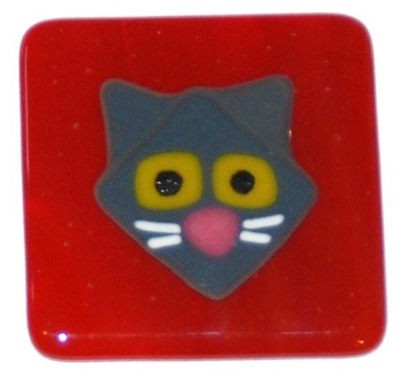 gray cat on red tile.JPG
