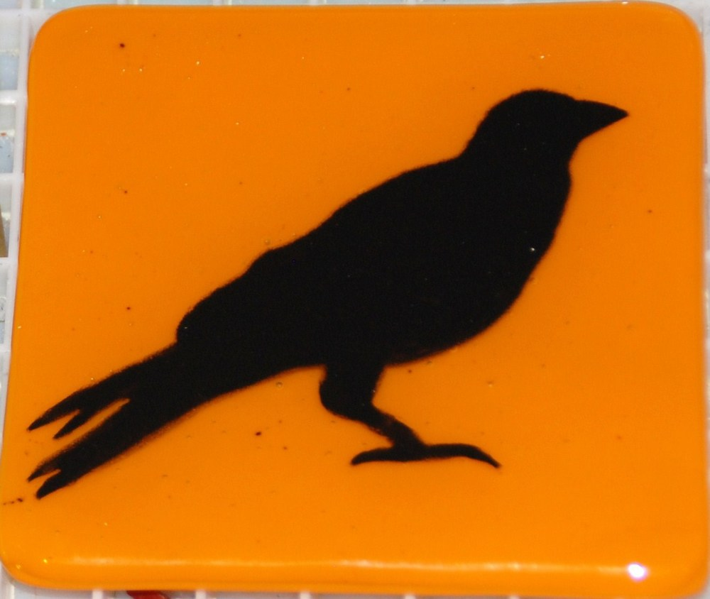 orange crow.jpg