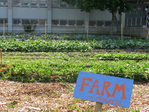 Gardens_BK-Farmyards-Farm-sign.jpg