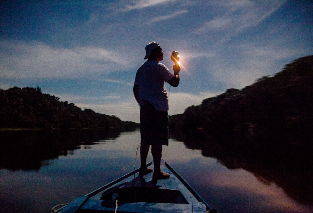 Looking for Caymans at Rio Negro, Amazonas