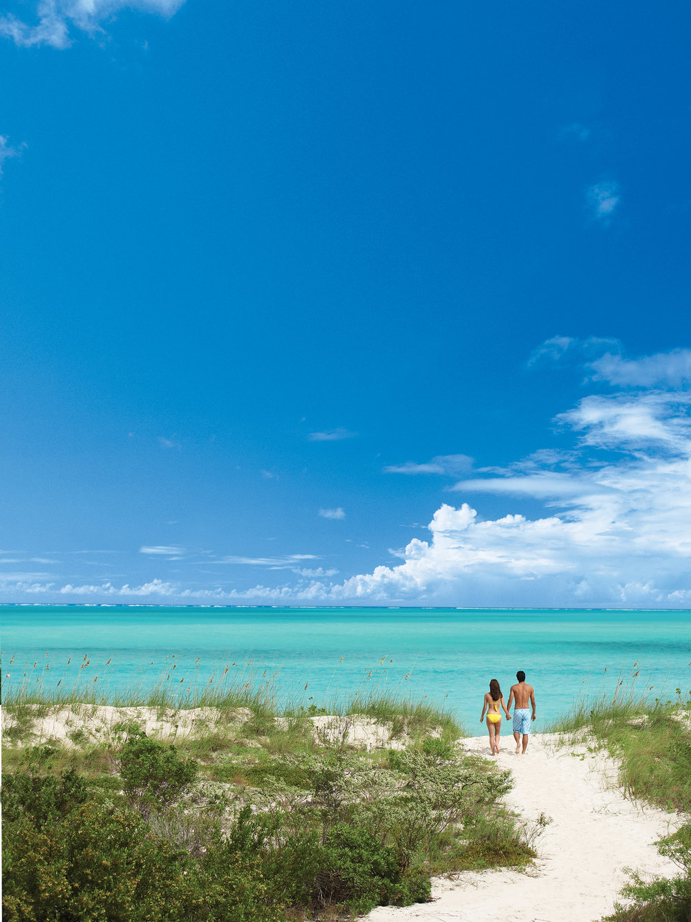 Parrot Cay2_Turks and Caicos.jpg