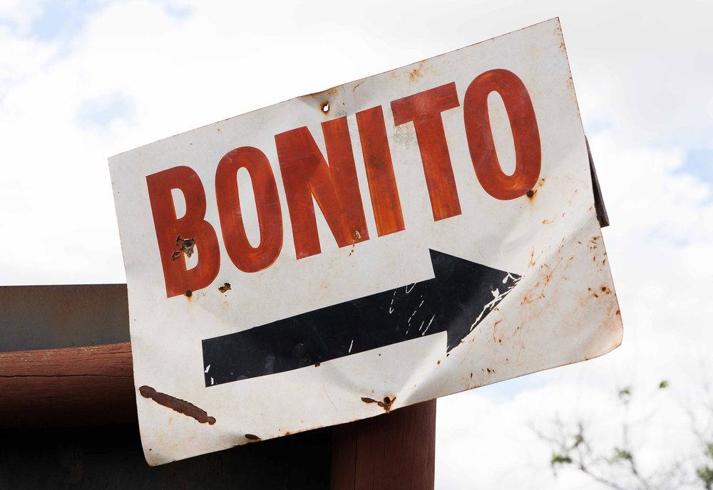 Bonito-1636.jpg