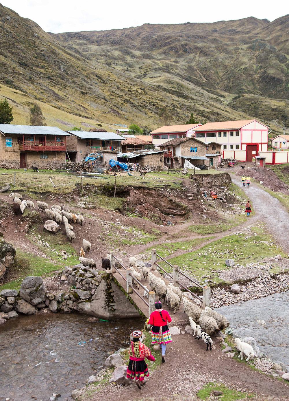 Huachuasi-Peru-3234.jpg