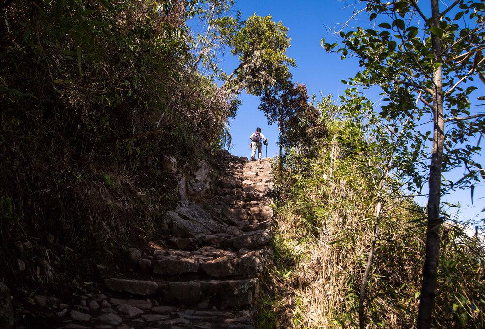 Machu Picchu trail-5472.jpg
