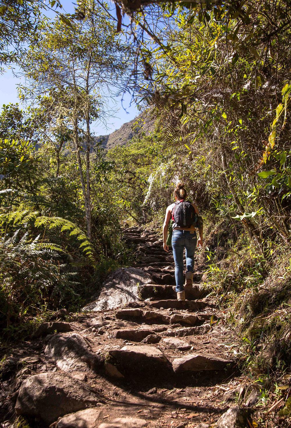 Machu Picchu trail-5443.jpg