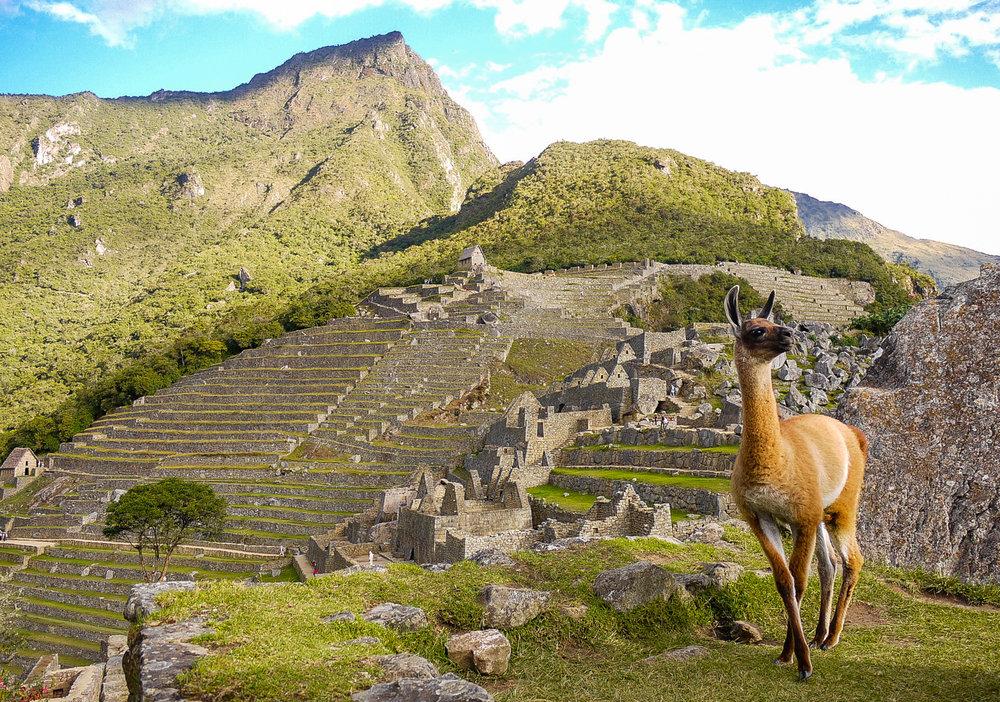 Machu Picchu-Peru-1730.jpg