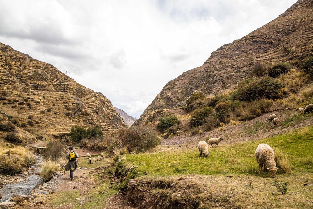 Totora trail-4230.jpg