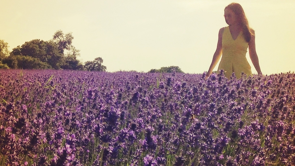 How Does it Grow?  host Nicole Jolly visits Mayfield Lavender in Surrey, England.